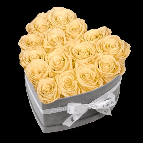 Classic Infinity Rosebox   Champagne   M