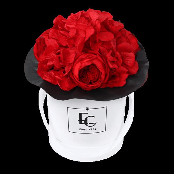 Splendid Peony Infinity Rosebox   Vibrant Red   XS