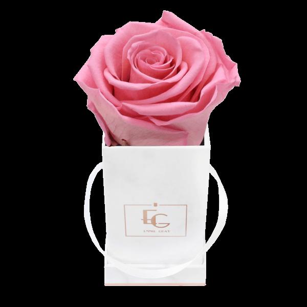 Classic Infinity Rosebox | Baby Pink | XXS
