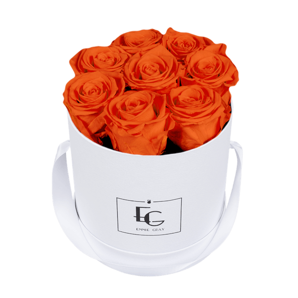 CLASSIC INFINITY ROSEBOX | ORANGE FLAME | S
