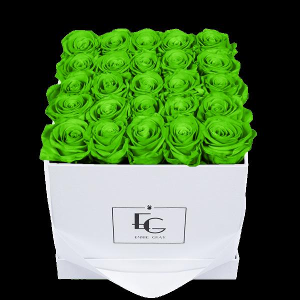 CLASSIC INFINITY ROSEBOX   GREEN GLOW   M