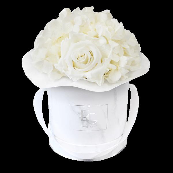 Splendid Hydrangea Infinity Rosebox | Pure White | XS