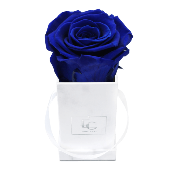 Classic Infinity Rosebox   Ocean Blue   XXS