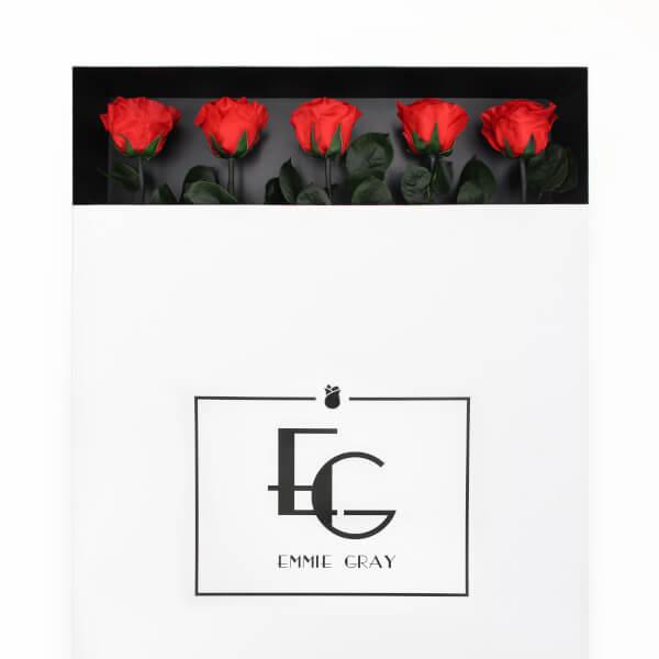 Long Stem Infinity Rose   Vibrant Red   5 Roses