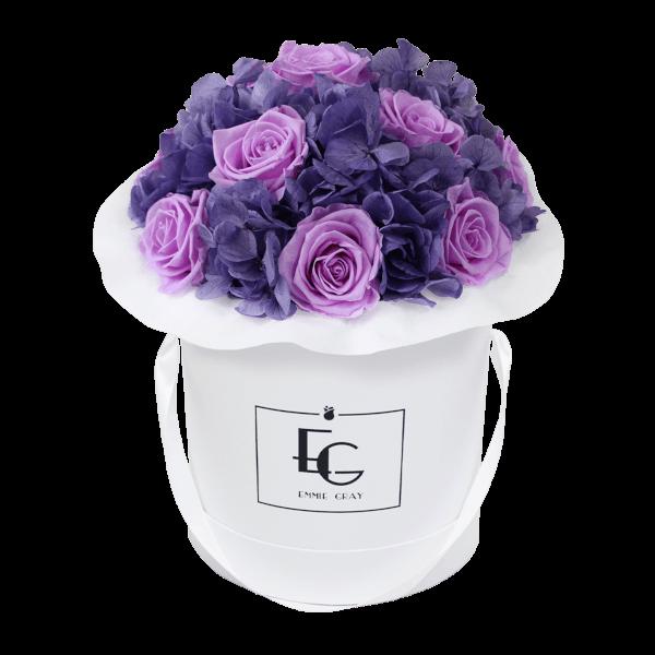 Splendid Hydrangea Mix Infinity Rosebox   Baby Lilli & Violet Vain   M