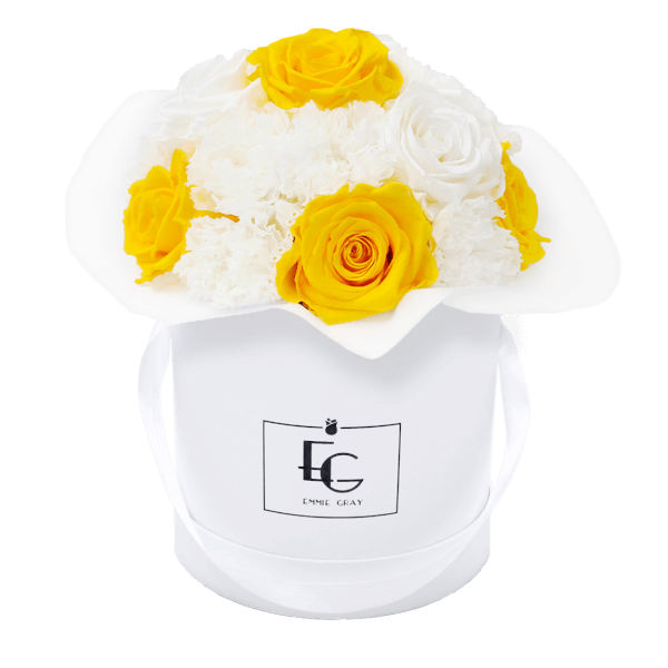 Splendid Carnation Mix Infinity Rosebox | Sunny Yellow & Pure White | S