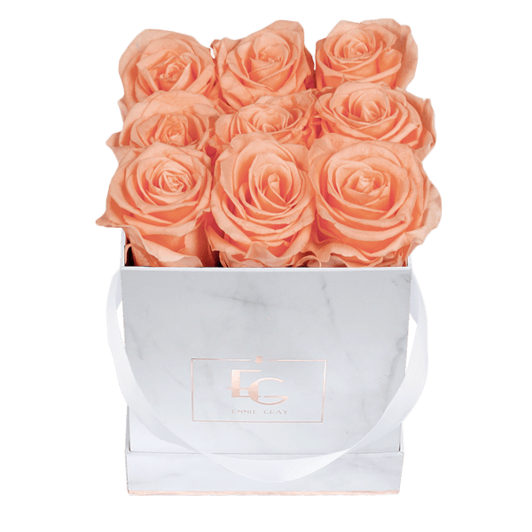 Classic Infinity Rosebox | Perfect Peach | S