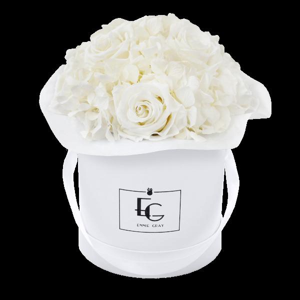 Splendid Hydrangea Infinity Rosebox | Pure White | S