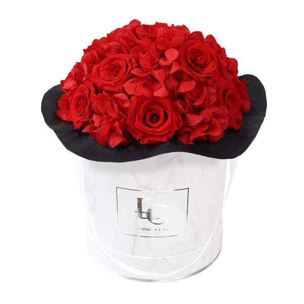 Splendid Hydrangea Infinity Rosebox   Vibrant Red   M