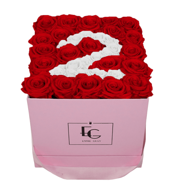 NUMBER INFINITY ROSEBOX | VIBRANT RED & PURE WHITE | M