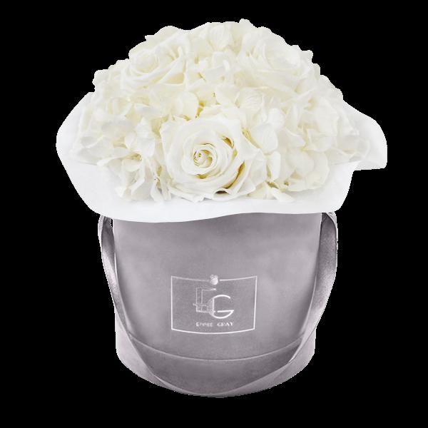 Splendid Hydrangea Infinity Rosebox   Pure White   S
