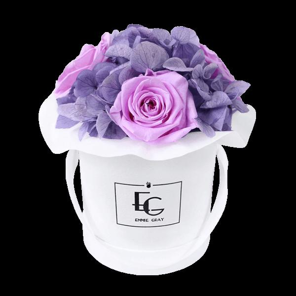Splendid Hydrangea Mix Infinity Rosebox | Baby Lilli & Violet Vain | XS