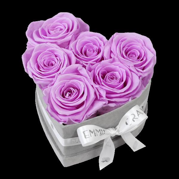 Classic Infinity Rosebox | Baby Lilli | S