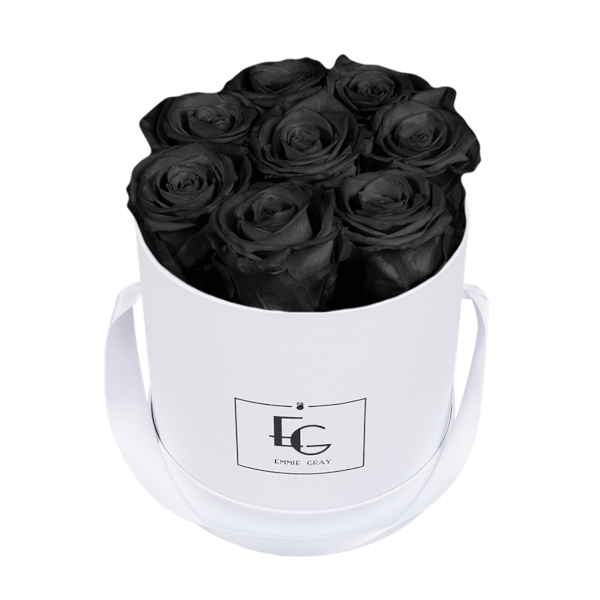 CLASSIC INFINITY ROSEBOX | BLACK BEAUTY | S