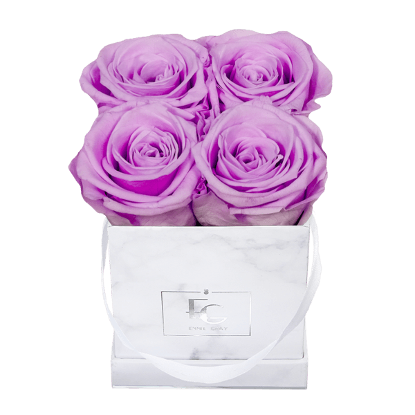 Classic Infinity Rosebox | Baby Lilli | XS
