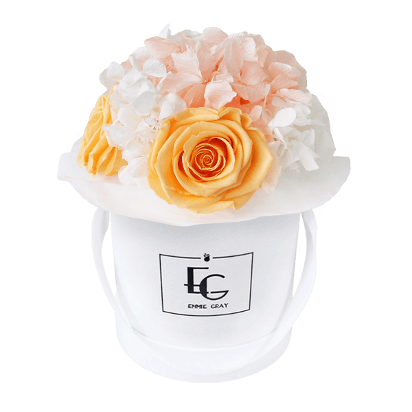 Splendid Hydrangea Mix Infinity Rosebox | Perfect Peach & Pure White | XS