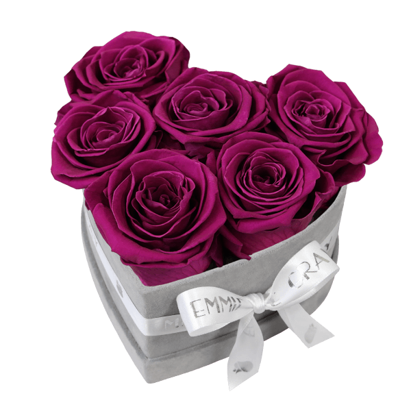 Classic Infinity Rosebox   Velvet Plum   S