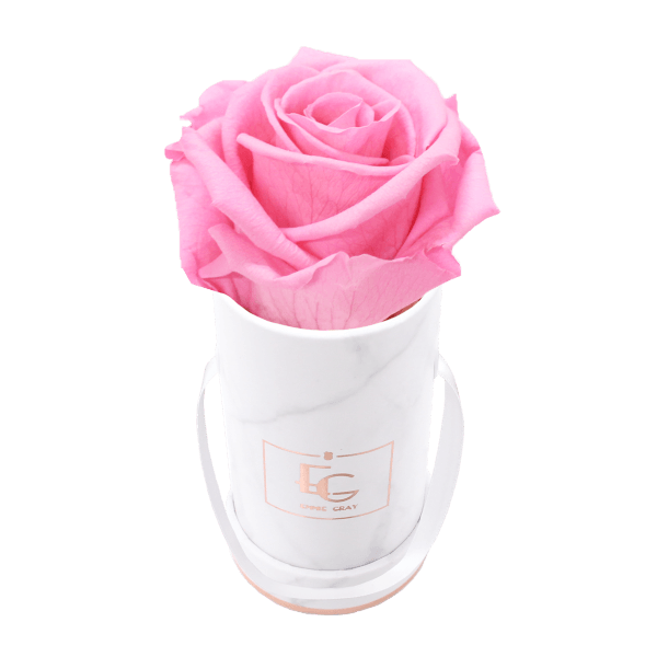 Classic Infinity Rosebox | Bridal Pink | XXS